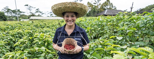 Nestlé Philippines employee in a coffee farm